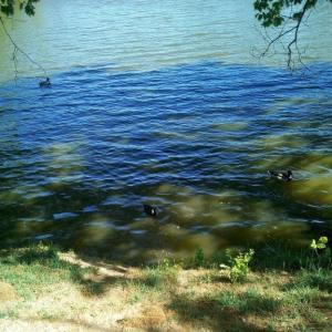 Seberak Lake